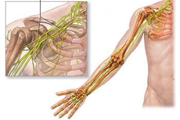 Cùng chuyên gia Dược Sài Gòn tìm hiểu về tình trạng co giật cơ cánh tay