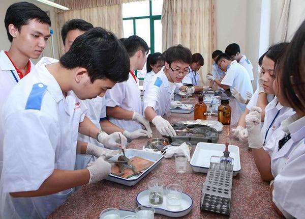 Sinh viên Y tham gia thực hành lâm sàng