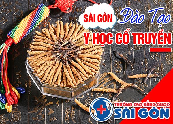 Đào tạo Y học cổ truyền Sài Gòn