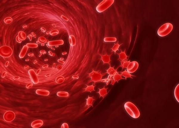 Bệnh tan máu tự miễn ảnh hưởng lớn đến sức khỏe con người