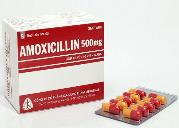 Thuốc Amoxicillin 500mg được sử dụng để điều trị những trường hợp nhiễm khuẩn