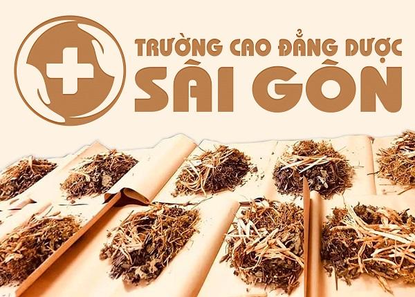 Trường Cao đẳng Dược Sài Gòn địa chỉ đào tạo Đông Y uy tín