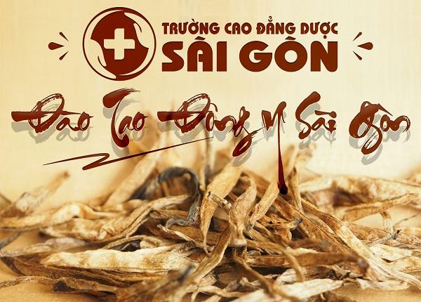 Đào tạo Trung cấp Y học cổ truyền Sài Gòn