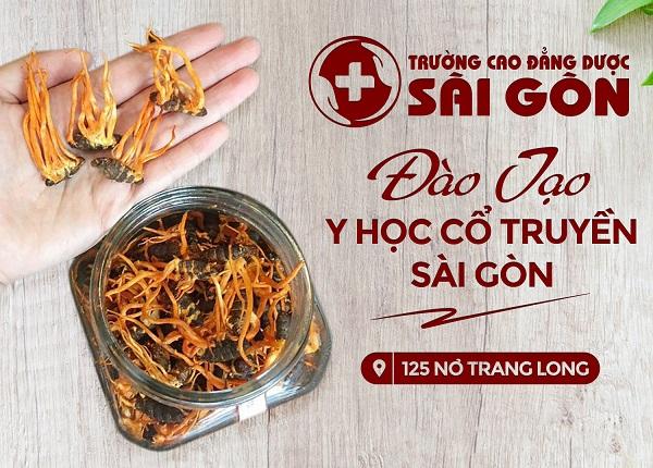 Trường Cao đẳng Dược Sài Gòn đào tạo Y học cổ truyền uy tín