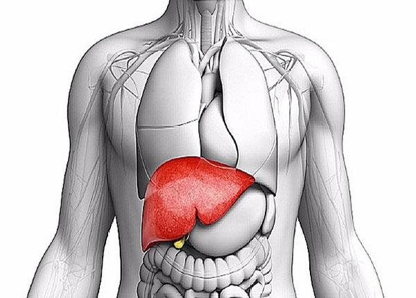 Sử dụng phương pháp bấm huyệt có thể giúp gan phổi khỏe mạnh