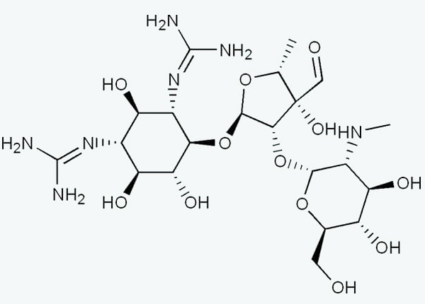 Cấu trúc kháng sinh nhóm Aminoglycosid